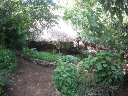 Eco aldea nel bosco presso Zipolite.