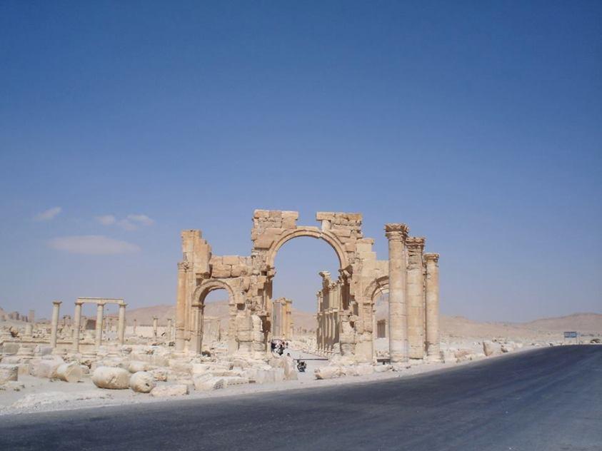 Palmira4