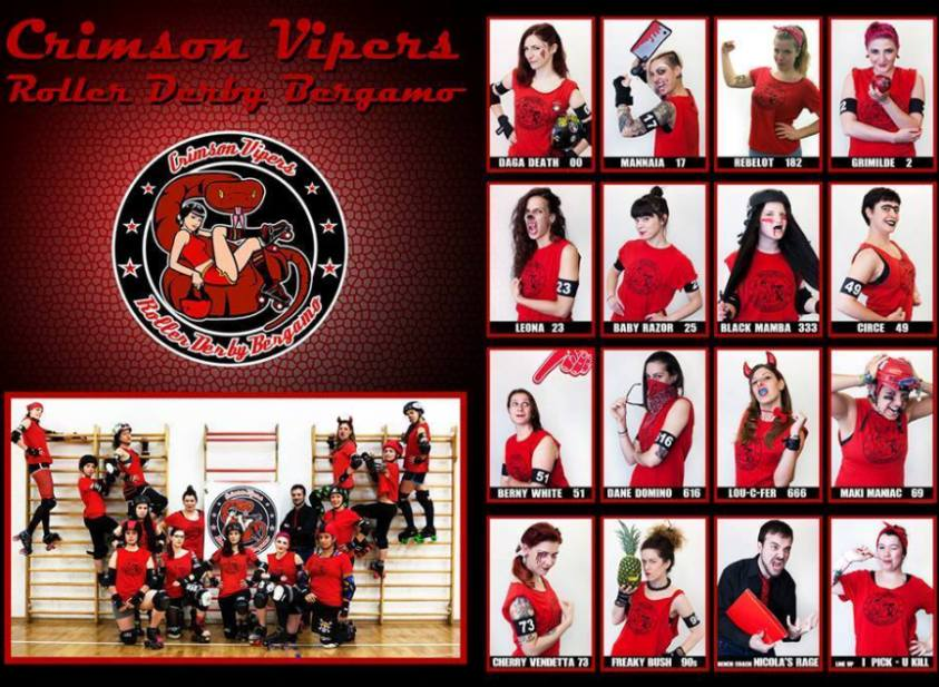 Vipers1