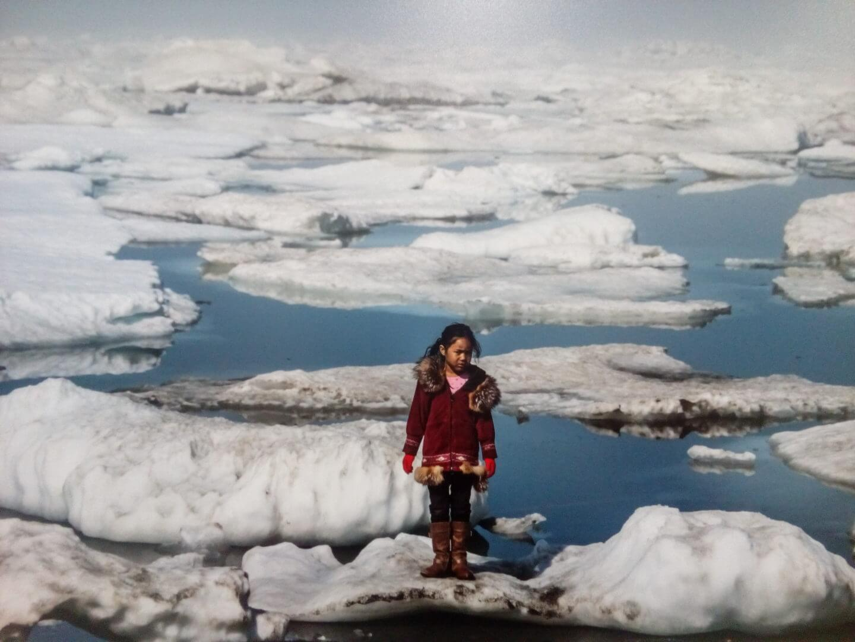 Cambiamento climatico_cover_V. Sokhin